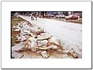 Esondazione fiume Ticino anno 1994 città di Pavia-8