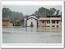 Esondazione fiume Ticino e del fiume Po 15 Ottobre 2000-5