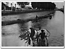 Scorci di un passato della città di Pavia Italy-2
